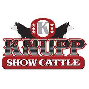 Knupp Show Cattle Logo Design