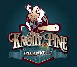 From Our Portfolio, Knotty Pine Brand Development and Logo Design
