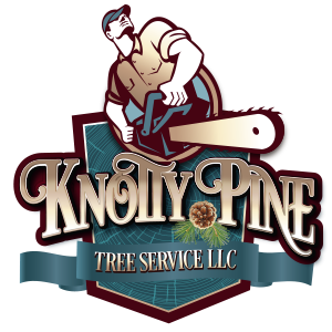 Knotty Pine Tree Service Logo Design